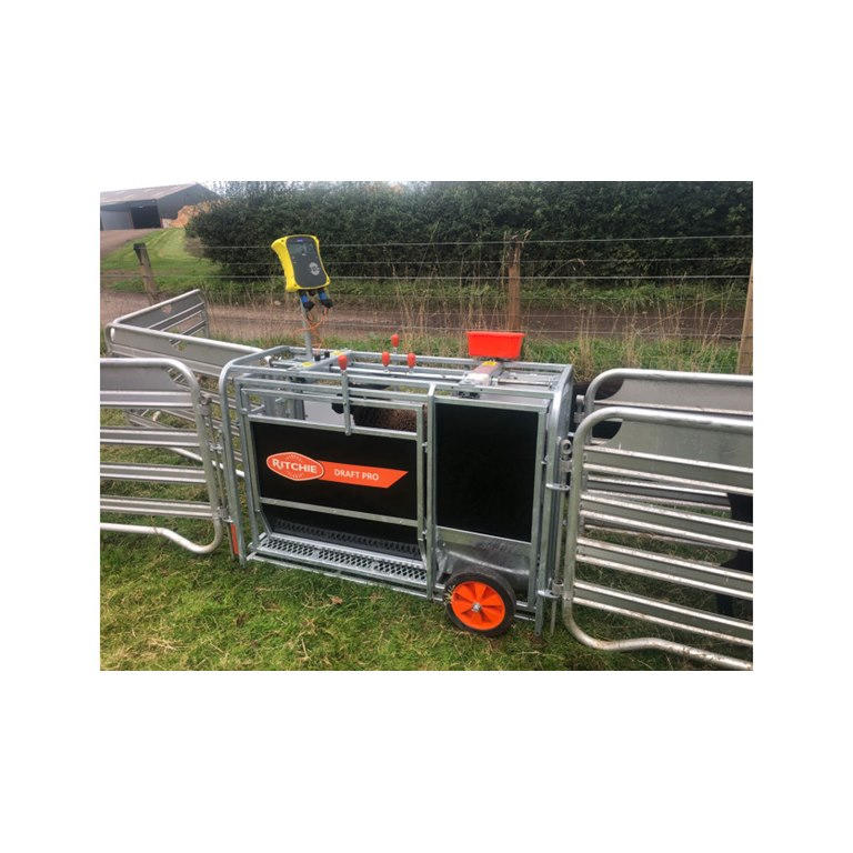 Ritchie Draft Pro 3 Aniaml Weigher ideal for weighing sheep, lamb and pigs