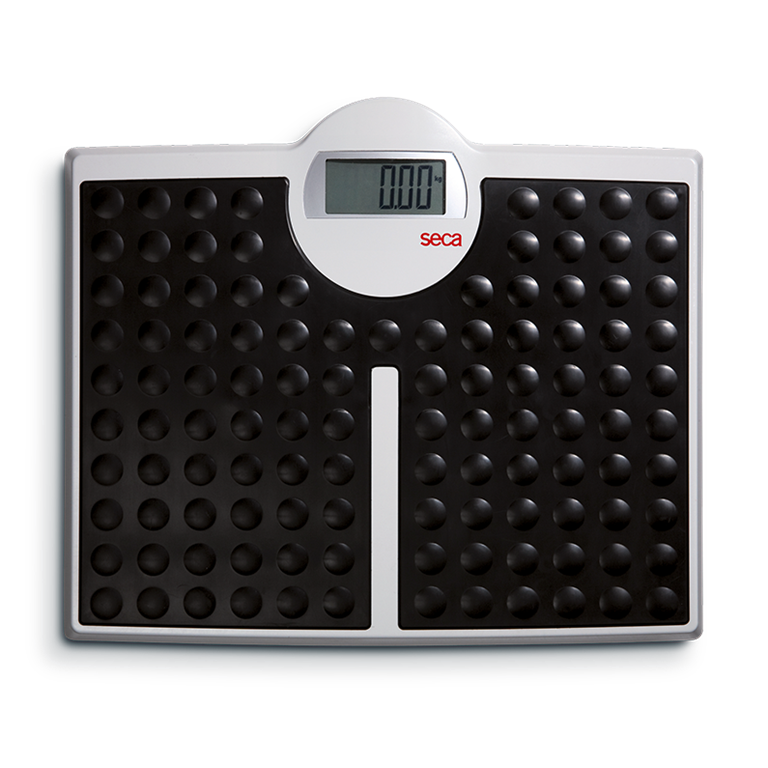 Seca 813 Robusta Personal Flat Scale
