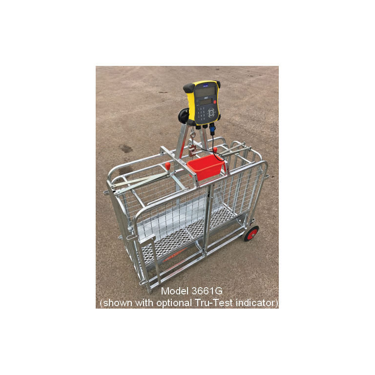 Tru-Test Digital Lamb Weigher
